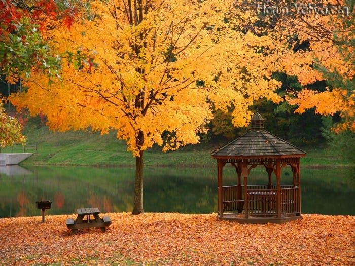 Sonbahar Gezileri Bir Başka Güzel