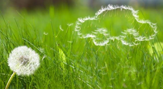 Aracınıza Bahar Bakımı Yaparken Nelere Dikkat Etmelisiniz?